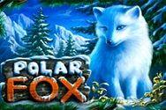 Игровой автомат Silver Fox в любимом онлайн казино 777 ГМСлотс картинка логотип